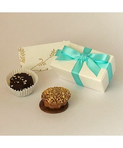 Aqua Wedding & Party Favours 2 Choc Bow