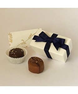 2 Choc Bow - Navy Blue